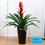 黑螺紋陶瓷花盆